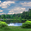 Country Place, Lake #