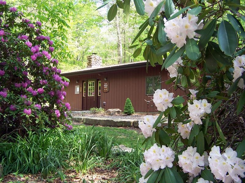 Blue Spruce Lodge