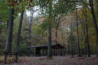 Pavilion #4