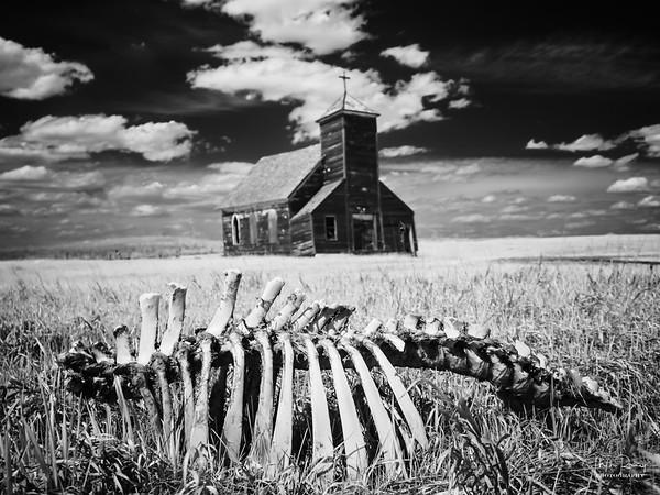 Death on the Plains