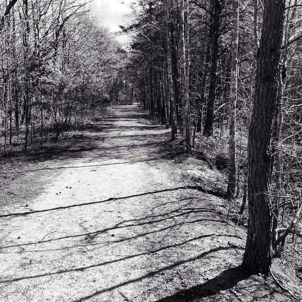 Nature trail.