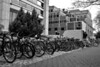 <center>Student Parking  <br>03 November 2013<br>Providence, Rhode Island<br><br>I liked the line of bikes parked along the science building here on the Brown University Campus.  What added life to the scene, though, was when students started to arrive in the background.  </center>