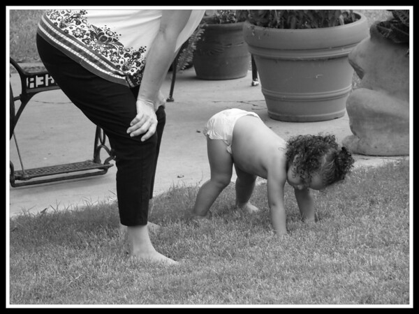 come on, darla...   downward facing dog