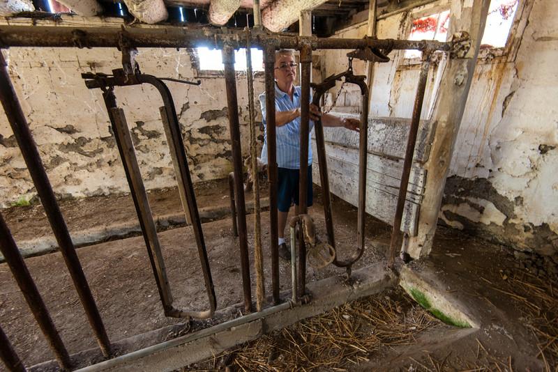 Thelma Walker - Walker Barn, Imlay City, Michigan