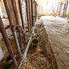 Walker barn - Imlay City, Michigan