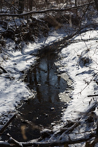 2013_12_25 Snowy Creek 001