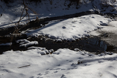 2013_12_25 Snowy Creek 002