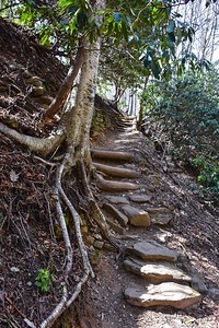 Graveyard Ridge