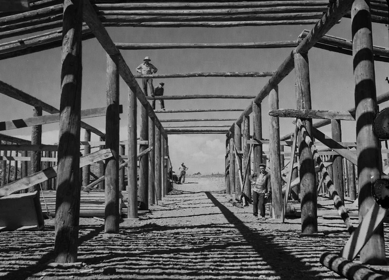 Wonderful shot of men building what looks like a stable or barn. Love the shadows. 1930s probably.