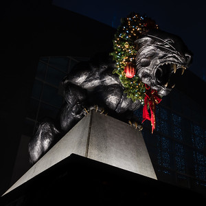 Panther Statue at Christmas