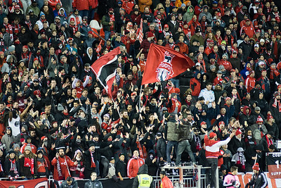 TFC supporters