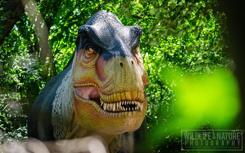 Animatronic Tyrannosaurus