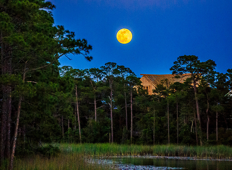 Florida Super Moon