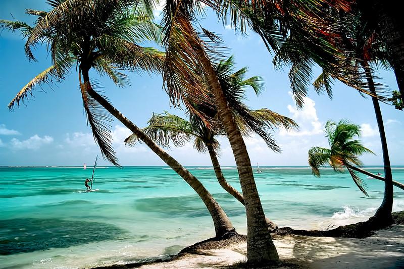 Guadeloupe Windsurfer