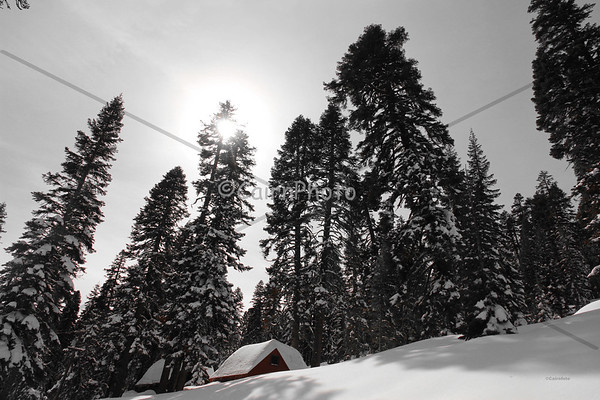 Echo Lake Snowshoe