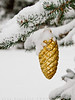 Golden Pinecone (#0064)