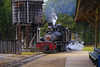Steam Train, Roaring Camp, Felton, CA