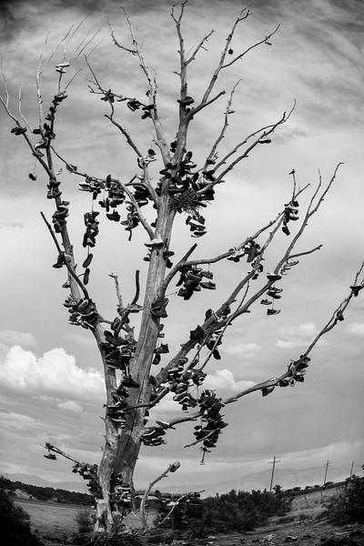 Shoe Tree,  Hinkley, UT