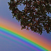 Rainbow  2.