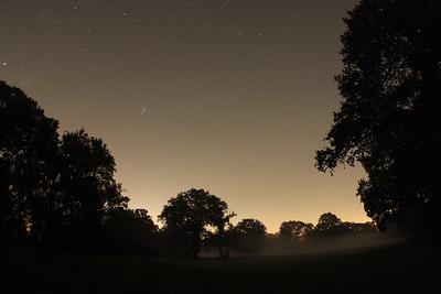 Nightsky | Seen from Twickel forest