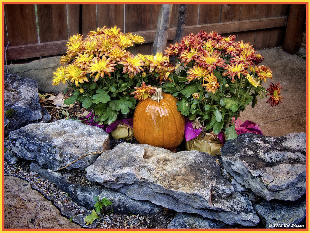 Autumn Decoration 05