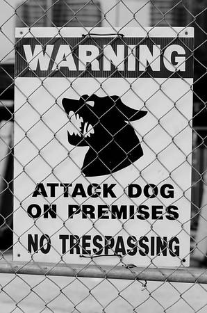 Attack Dog!