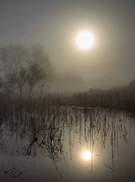 Mistycal Sunrise