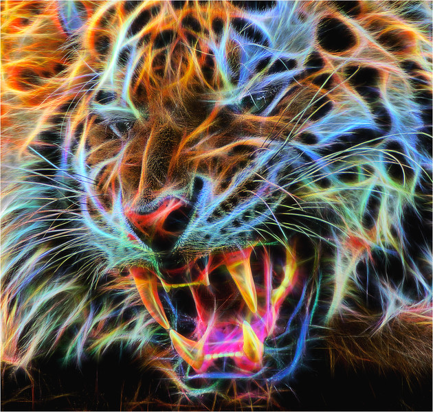 TIGER  ( fractalious )
