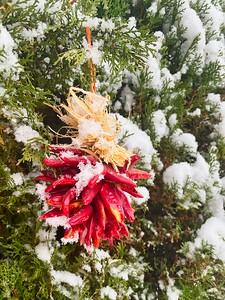 New Mexico Christmas