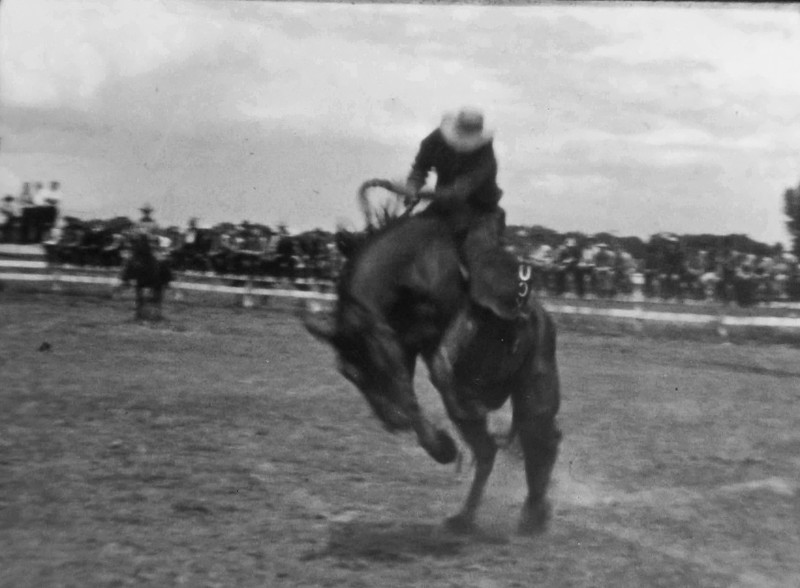 Love this shot. Rodeo bronco. 1930s.