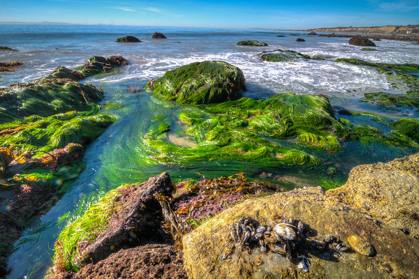 Crystal Cove-6053_4_5_6_7_HDR