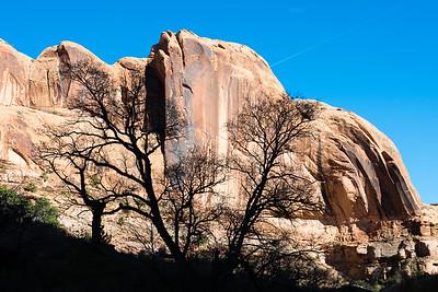 Negro Bill Canyon-3978