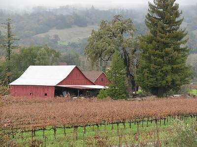 Sonoma Valley, California