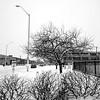 Midtown Winter