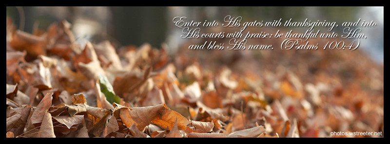 """Fall Leaves"" facebook timeline cover photo"