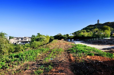 The railway embankment at Trasnagh Drive, Newtownards. looking south towards Comber direction.