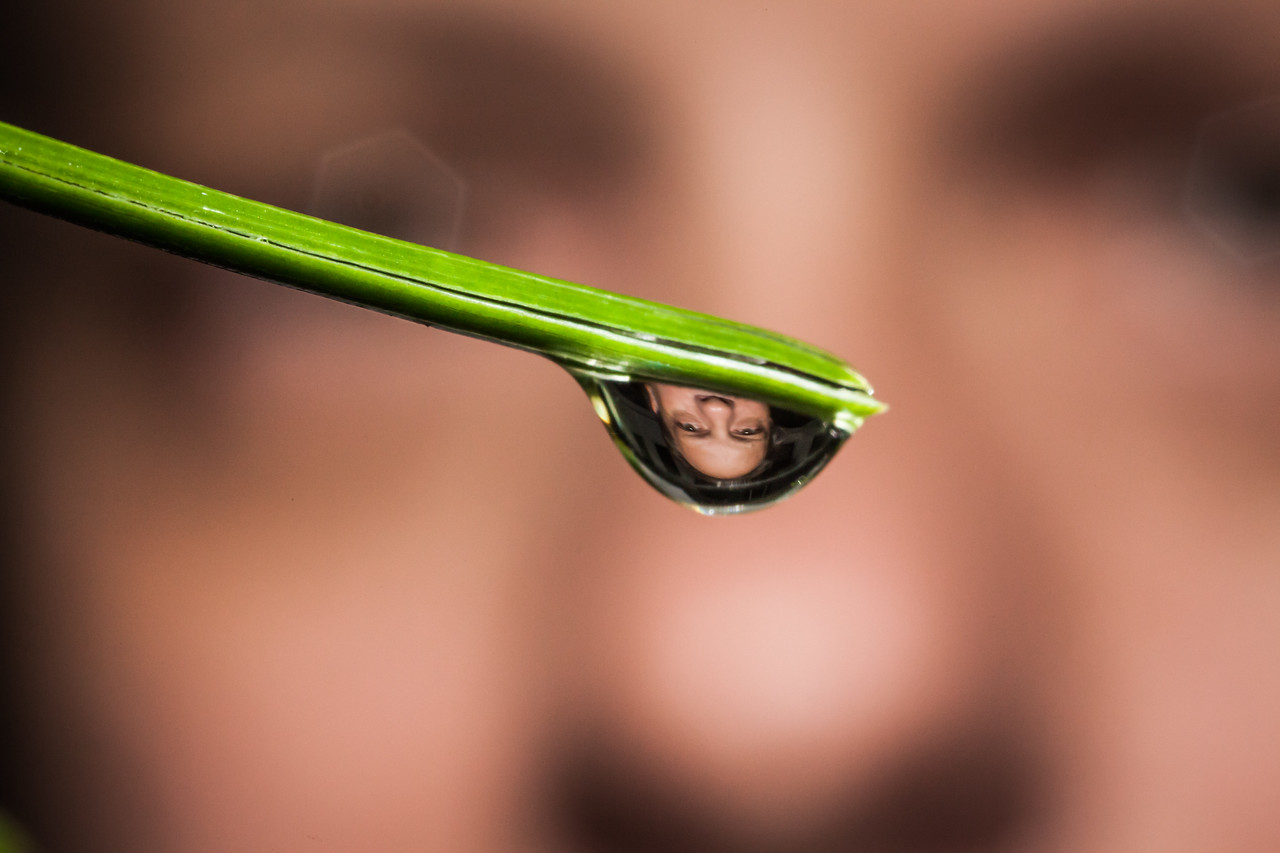 The photographer reflected in a water droplet on a pine needle