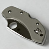 Spyderco Dragonfly in foliage grey G10