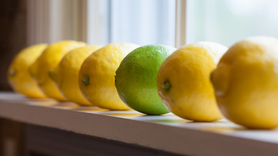 Lemons and Lime on Windowsill