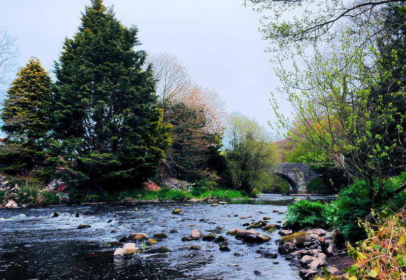 The River Bann<br /> Laurencetown<br /> County Down<br /> Sunday, 26th April 2015
