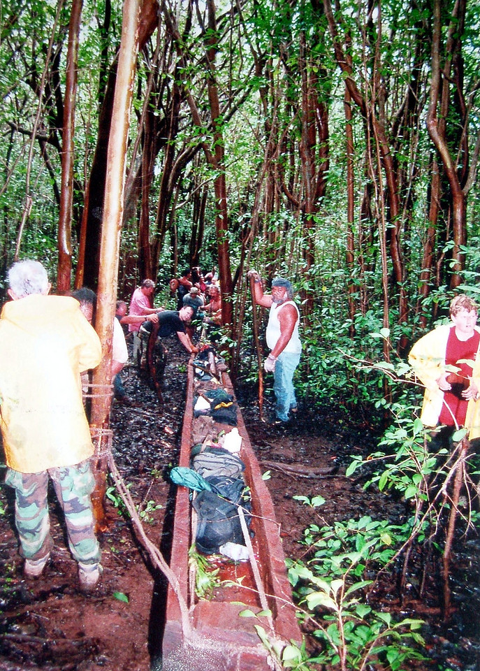 Cultural impacts strawberry guava stands hinder the movement of a new canoe from upper forests