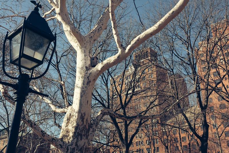 Cheepest rent in Manhattan