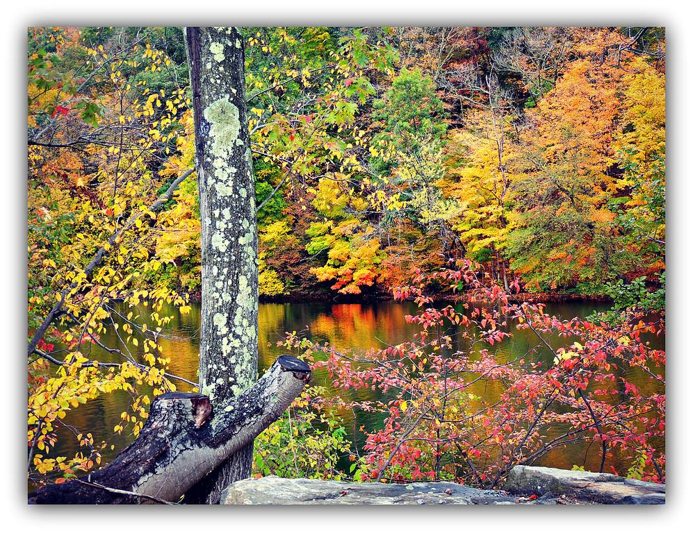 Lake Lillinonah Landscape