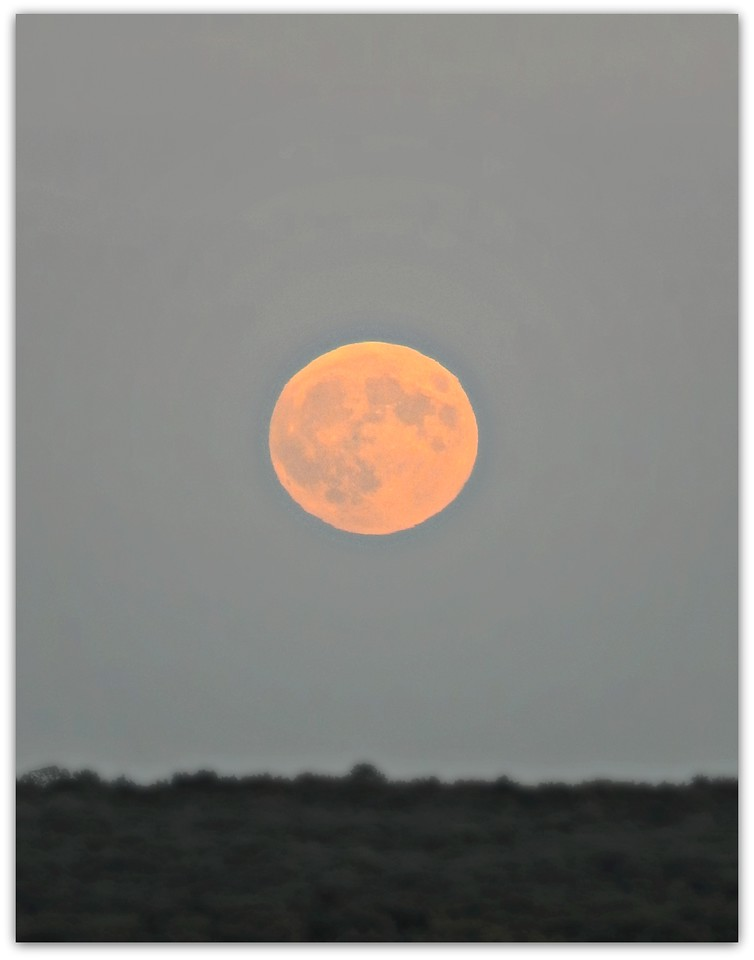 Supermoon Rise