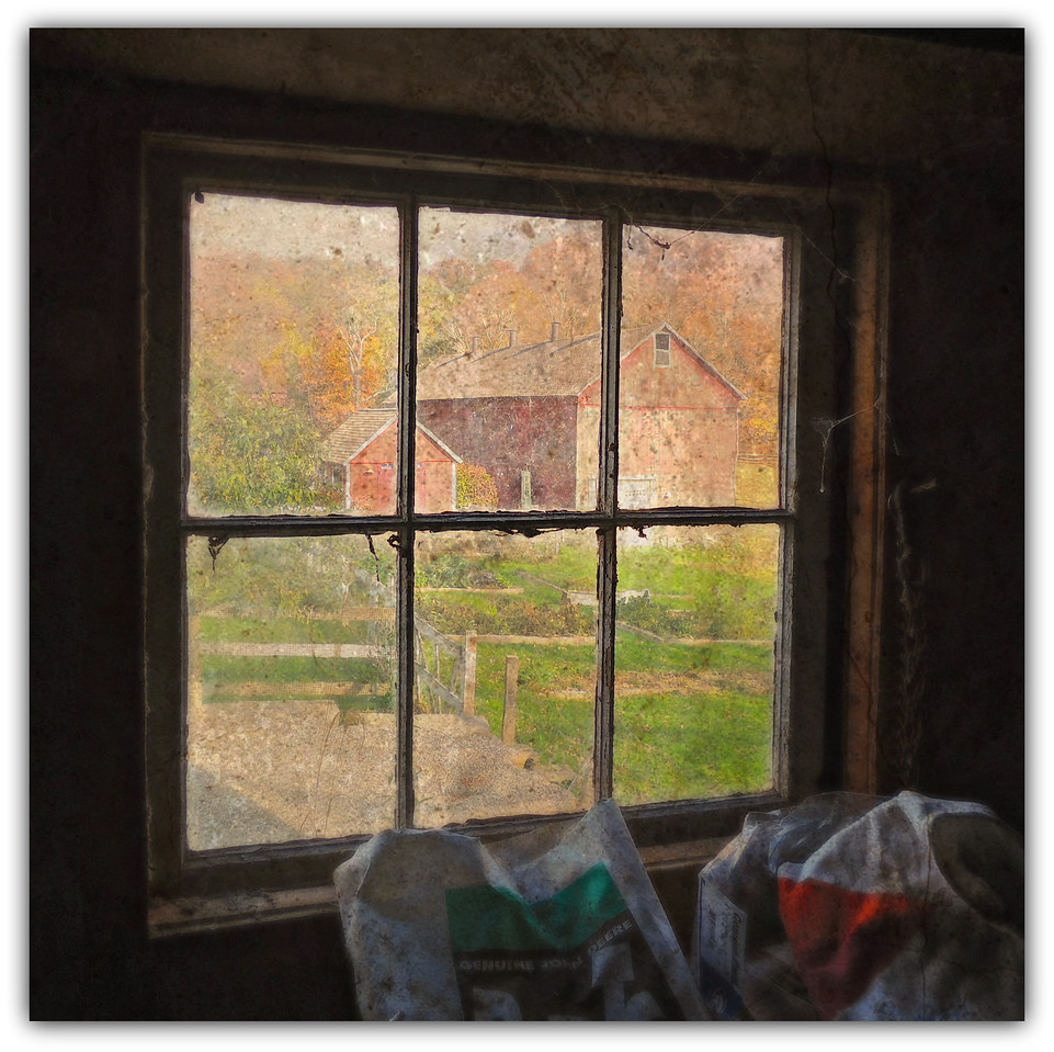 View From A Barn Window