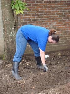 Working on the garden