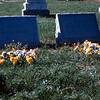 15 - Charles & Elizabeth Mispagel tombstones
