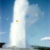 1959-Zion-Bryce-Yellowstone (14)