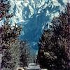 1959-Zion-Bryce-Yellowstone (8)