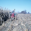 10 - Uncle Lawrence picking corn